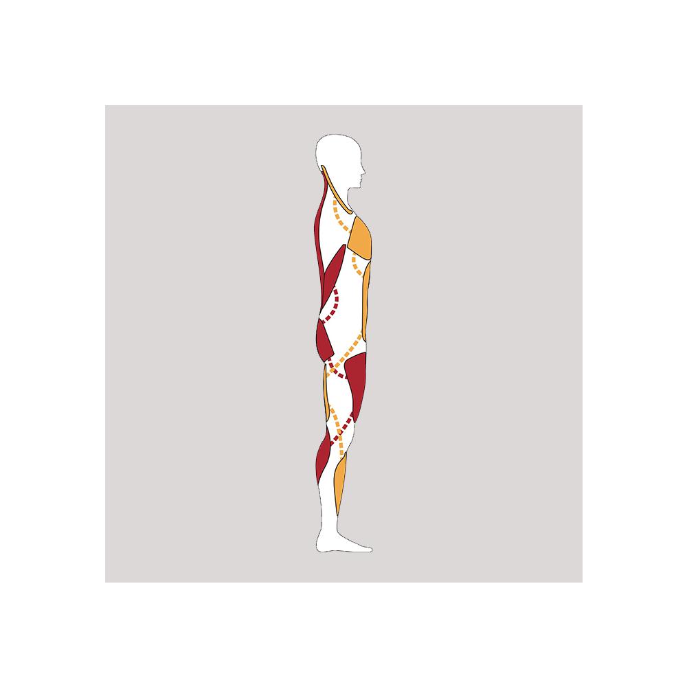 Physiotherapie Antje Martin, Herzogenaurach